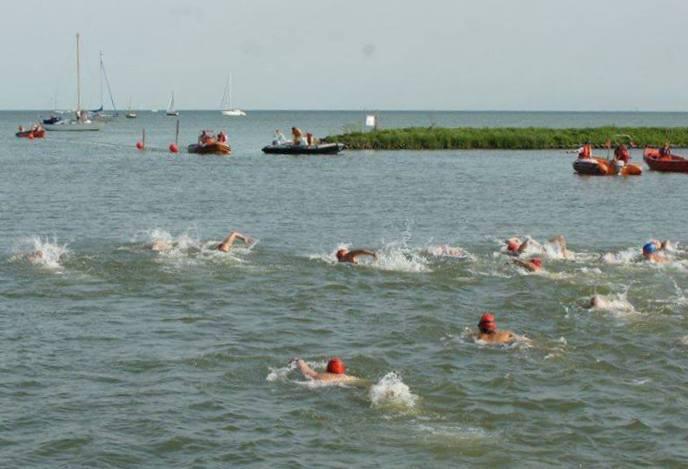 OpenwaterZwemmenAfbeelding